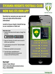 Team app flyer